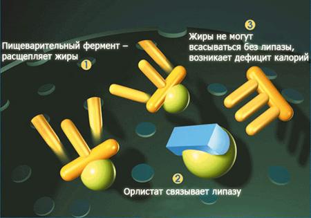 таблетки для похудения орлистат