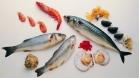Рыба и морепродукты во время беременности
