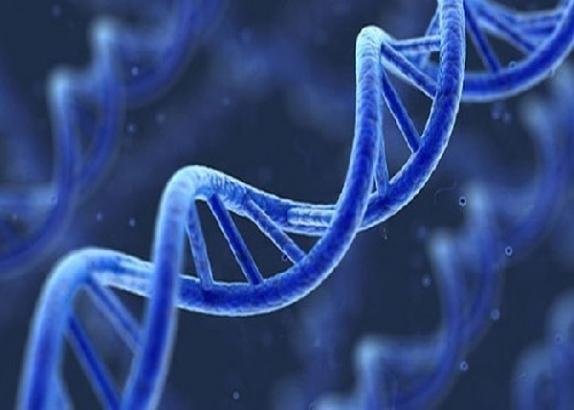 Обнаружена генетическая мутация, влияющая на лечение гепатита С