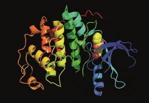 Ученые придумали новый способ разработки лекарств