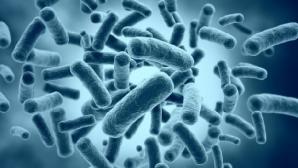Ученые разработали экспресс-тест для лихорадки Эбола