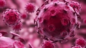 Ученые обещают суперэффективную вакцину от ВИЧ