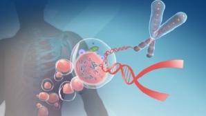Супер-микроскоп расскажет все тайны ДНК