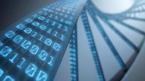 Почему наука рассматривает ДНК как исходный код жизни
