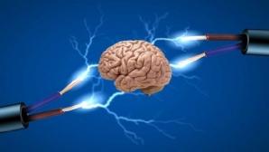 Насколько эффективен «фитнесс» для интеллекта?