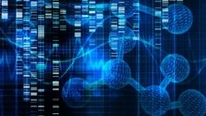 Создан важный инструмент клеточной терапии