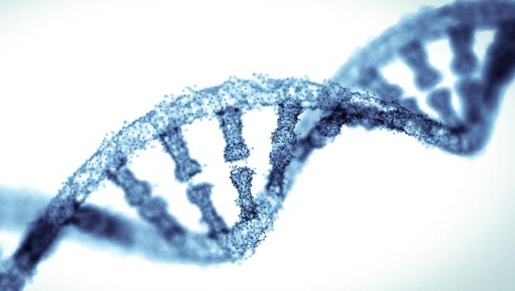 Ученые считают, что синдром Дауна подлежит лечению