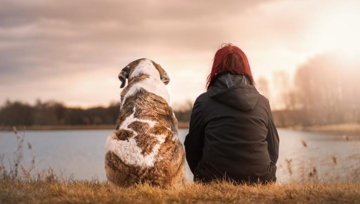 Идеальное здоровье обеспечит... собака