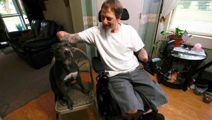 Обнаружена мутация человеческих генов, опасная для владельцев собак