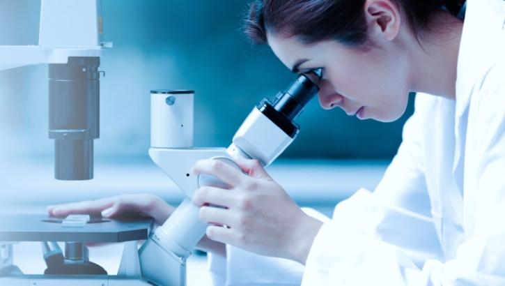 Папилломавирусы низкого онкогенного риска защищают от рака кожи