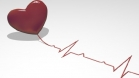 Тренировка сердца (кардиотренировка): шаг за шагом