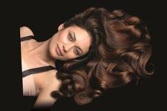 Эпоха Возрождения волос