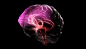 Мозговое кровообращение и стресс